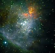 The Trapezium Cluster