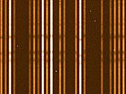 """""""First light"""" stellar spectra from Giraffe (detail)"""