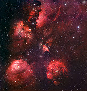 The Cat's Paw Nebula*