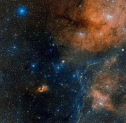 Around the star-formation region Gum 19 (RCW 34)