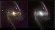 Comparación de imágenes de la galaxia NGC 1365 en luz visible e infrarroja
