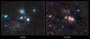 Comparación de visiones en infrarrojo y luz visible de la maternidad estelar en Monoceros
