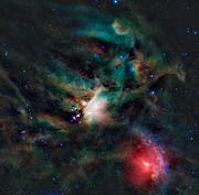 Imagen infrarroja de la región de formación estelar Rho Ophiuchi