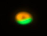 Image de la fabrique de comètes autour de Oph-IRS 48 acquise par ALMA et le VLT