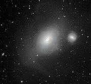 The contrasting galaxies NGC 1316 and 1317