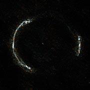 El anillo de SDP.81
