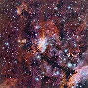 Primer plano de la Nebulosa del Camarón