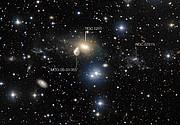 Los alrededores de la galaxia en interacción NGC 5291 (con anotaciones)