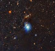 Una joven estrella ilumina a la nebulosa de reflexión IC 2631