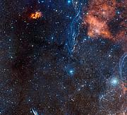 El rico paisaje estelar que rodea a la estrella doble evolucionada IRAS 08544-4431