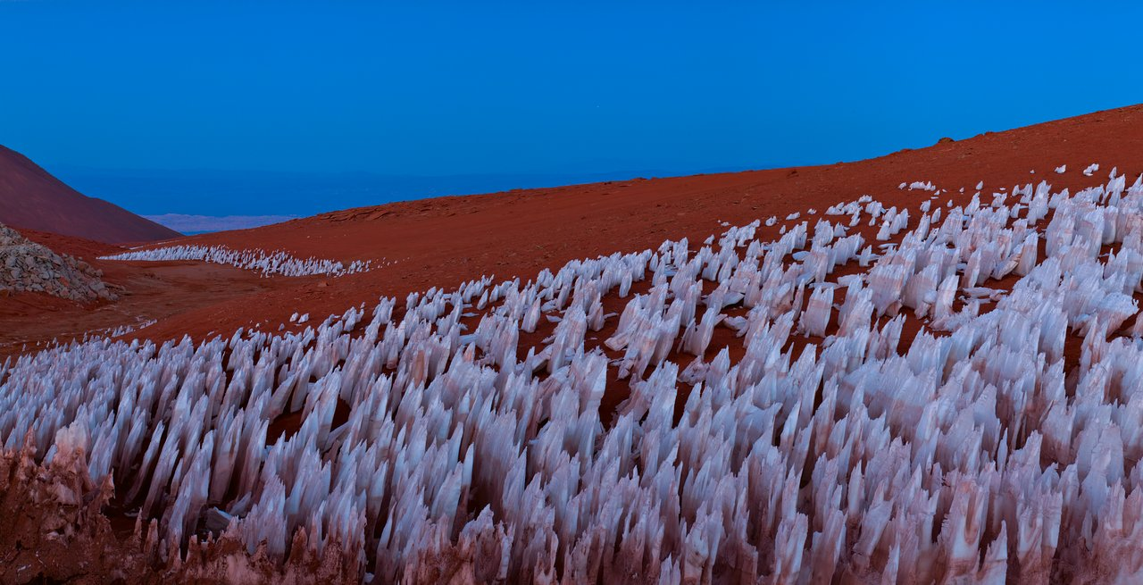 Atacama oddity