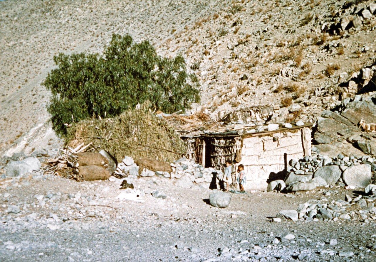 Neighbours at Quebrada Pelícano