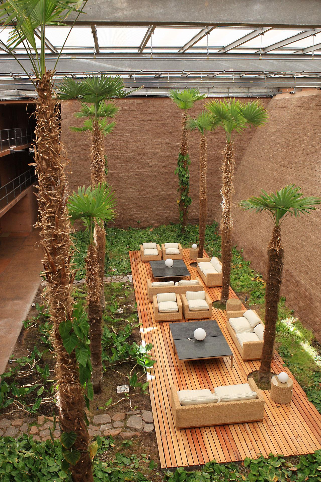 The palm-tree garden | ESO Belgique