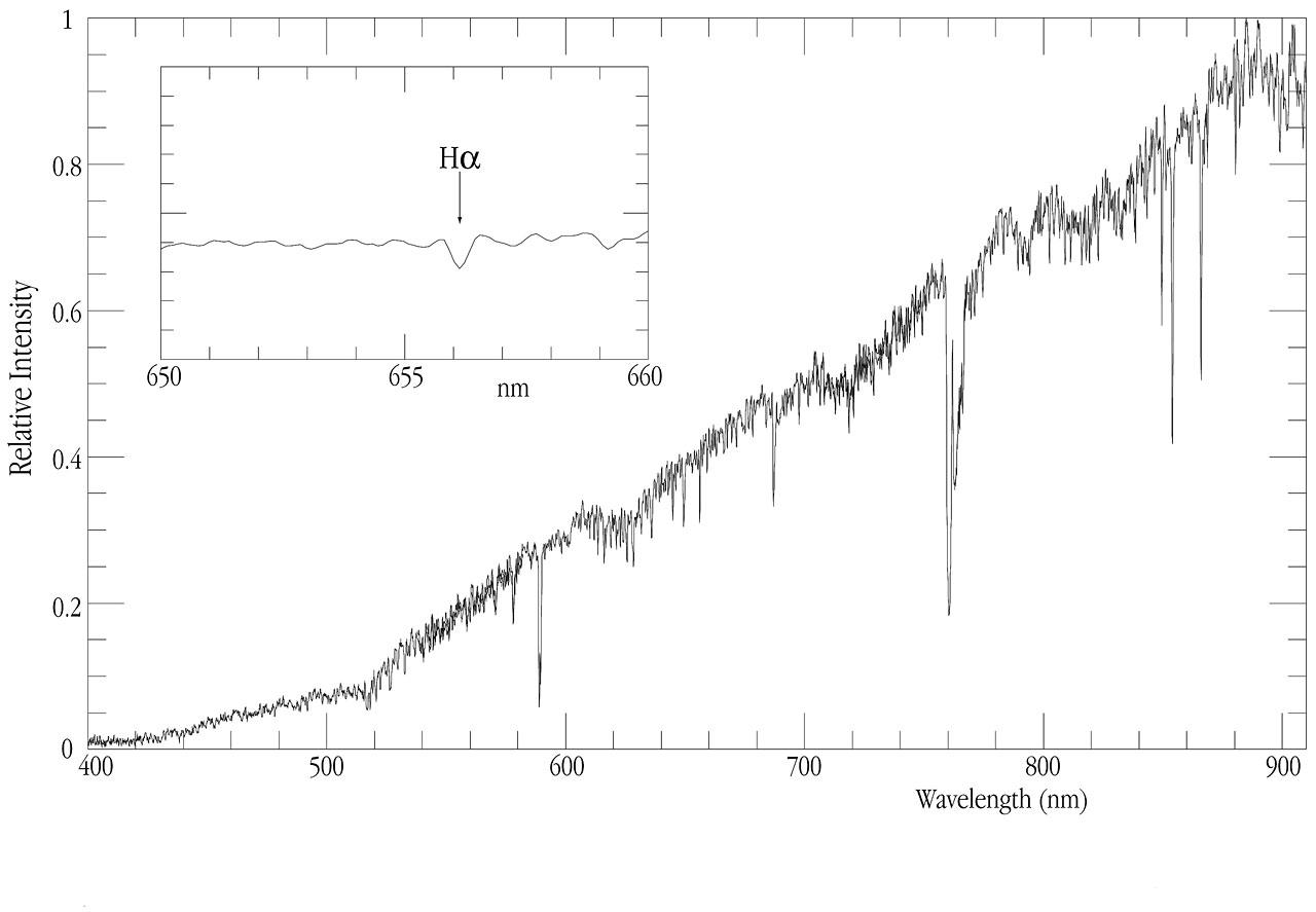 A VLT Spectrum of EROS-BLG-2000-5