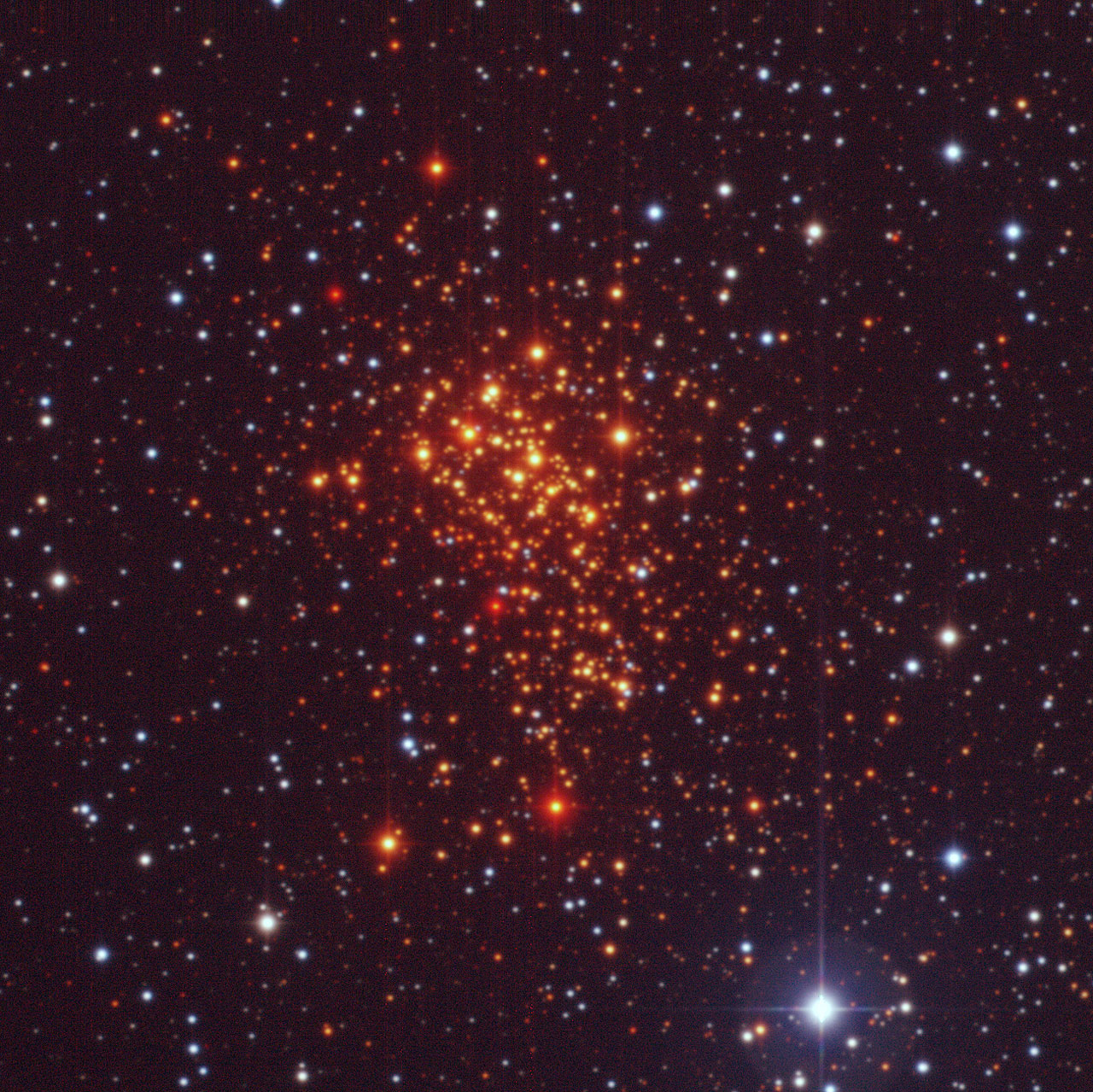 The Super Star Cluster Westerlund 1
