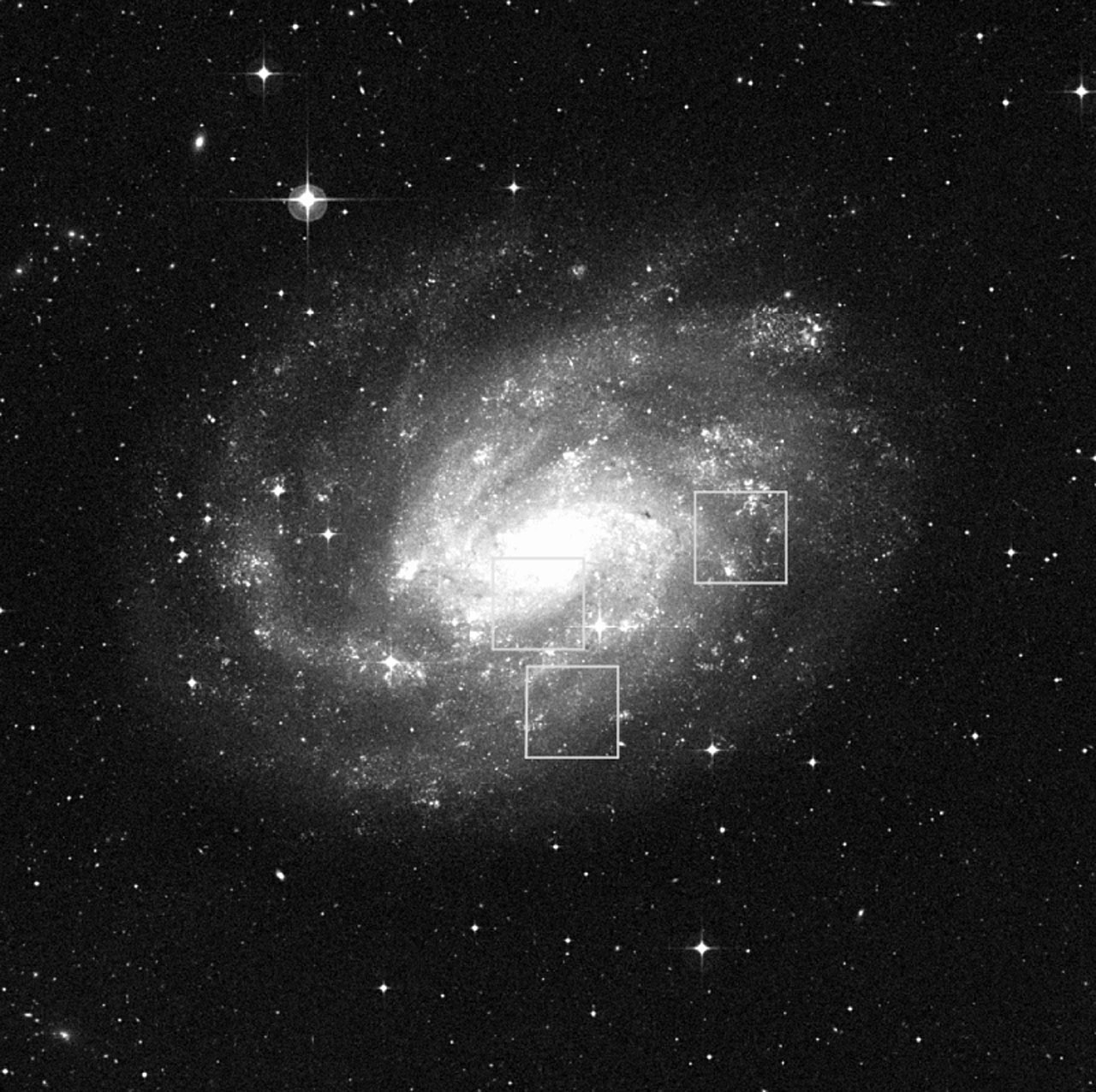 Observed Fields in NGC 300
