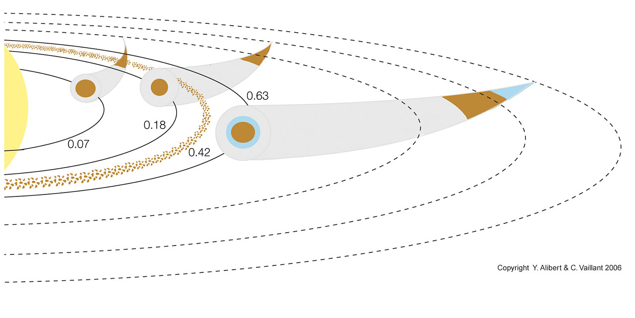 Formation Process of the Planetary System around HD 69830