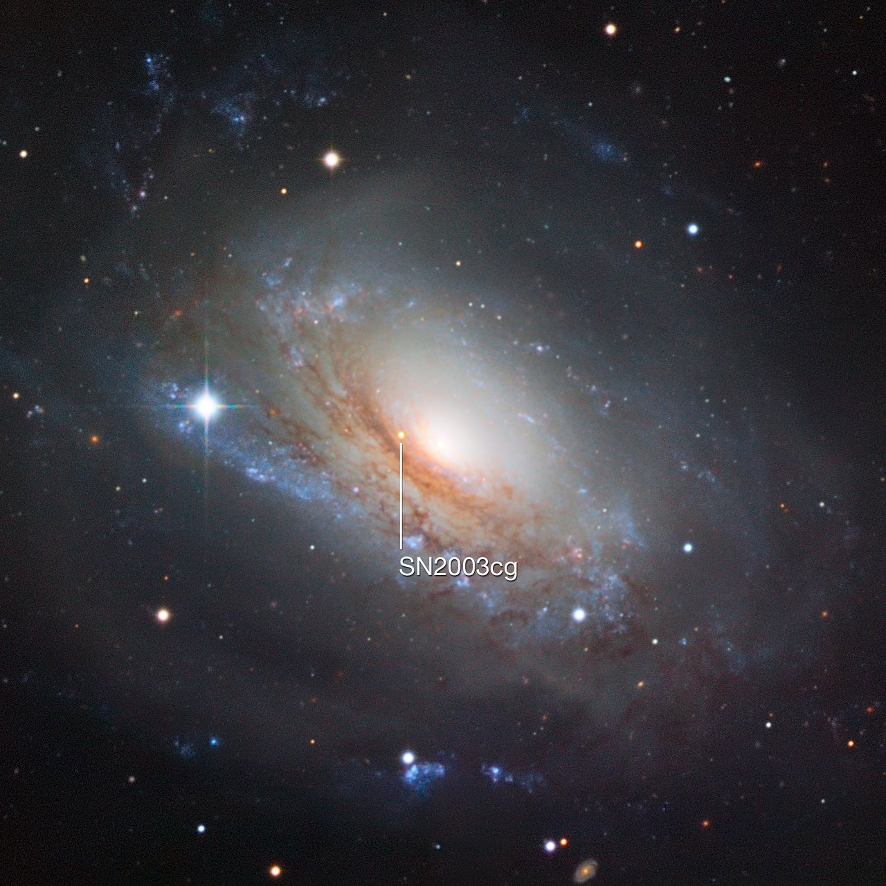 Supernova 2003cg en la galaxia NGC 3169