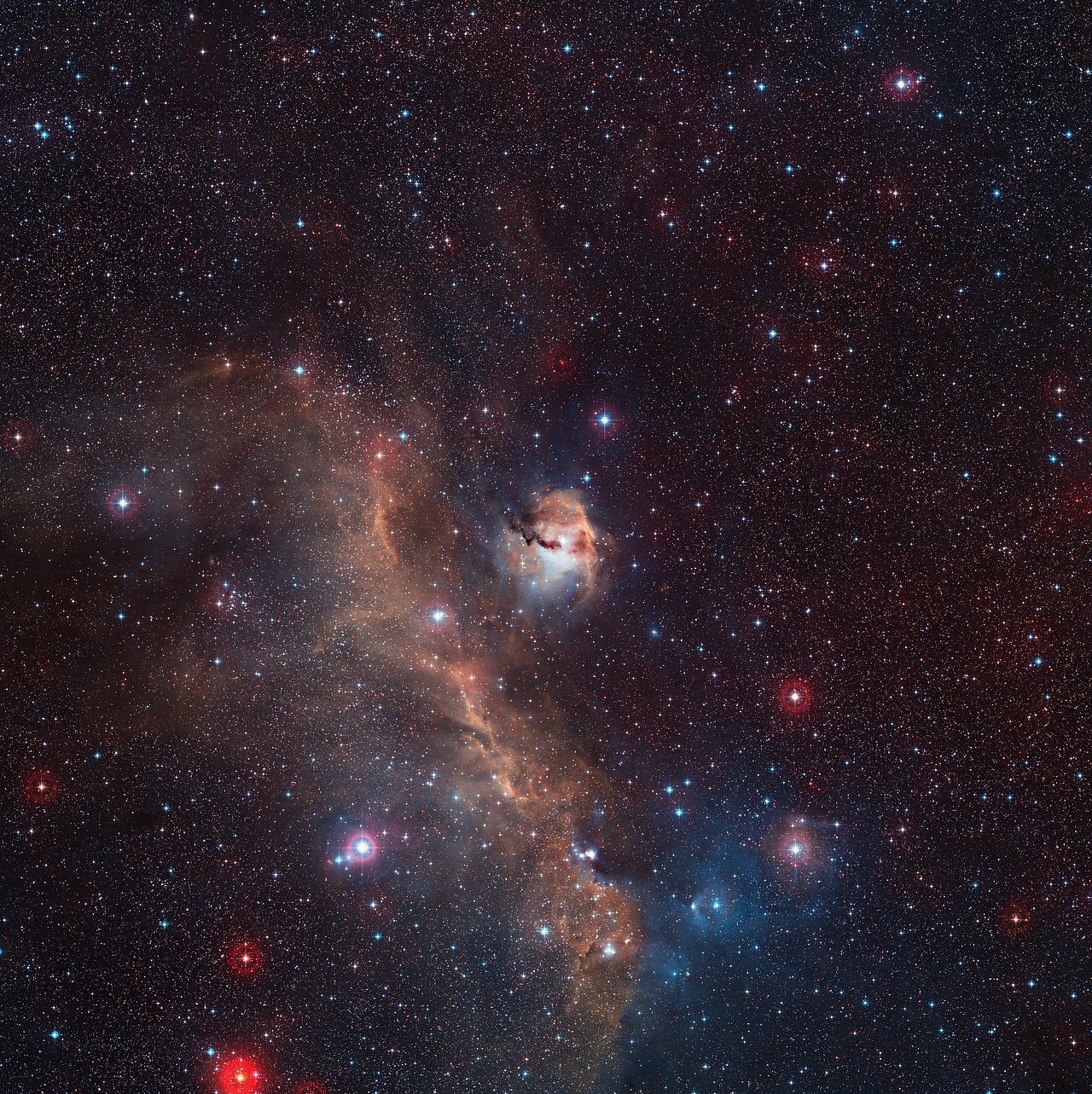 Panoramica dell'intera Nebulosa Gabbiano (IC 2177)