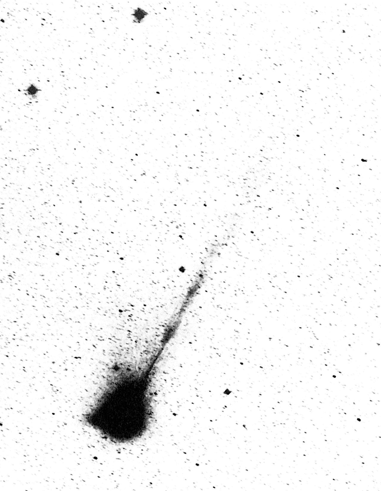 The long ion tail of Comet Wilson