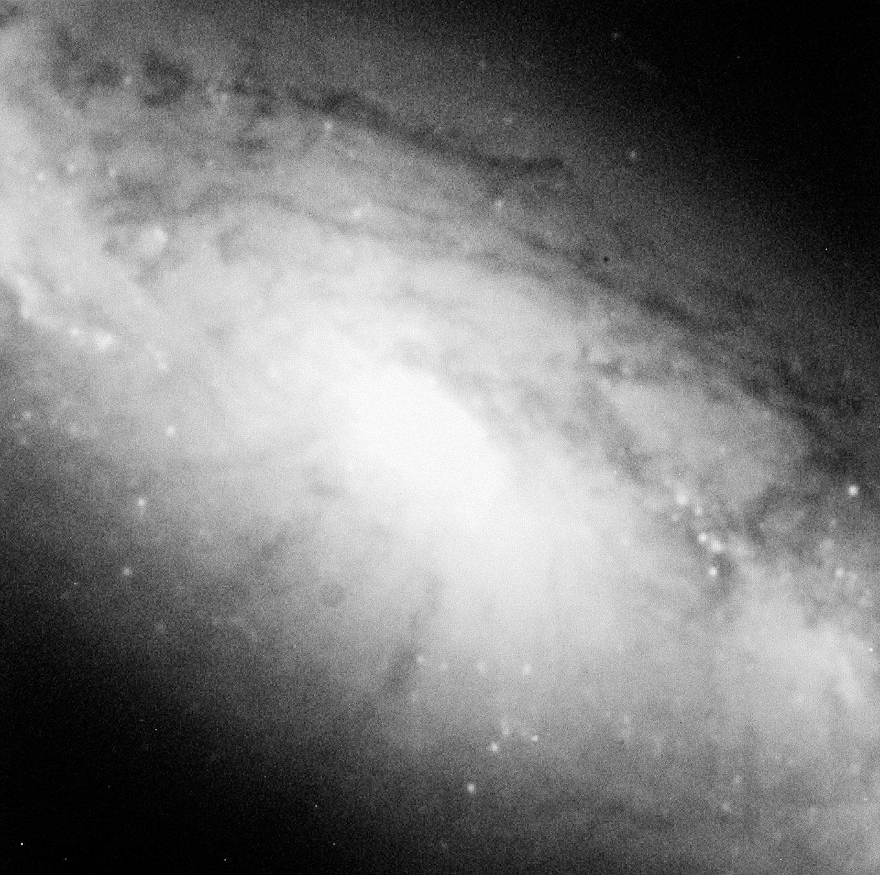 Galaxy NGC 1808