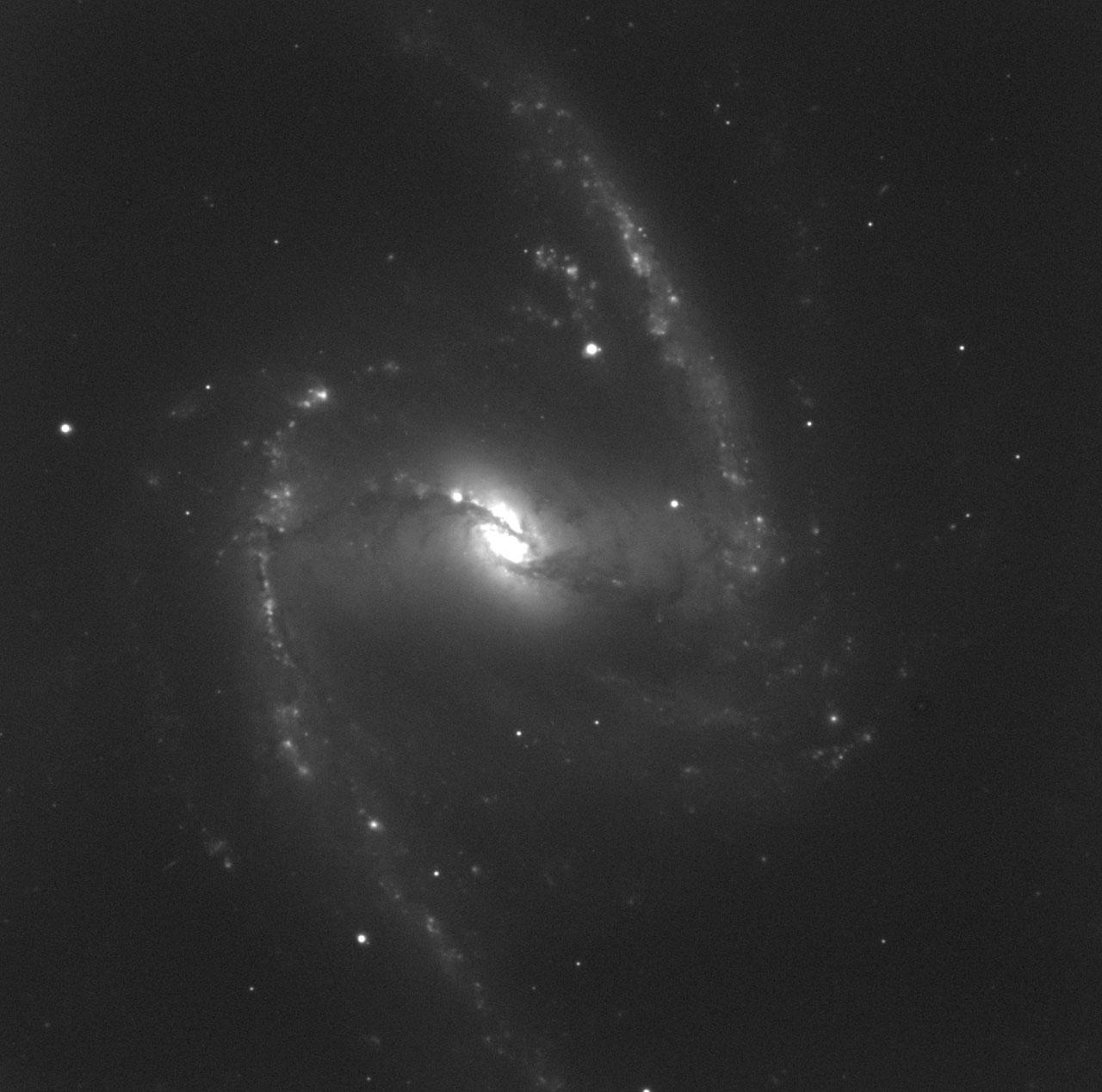 NGC 1365 - H-alpha