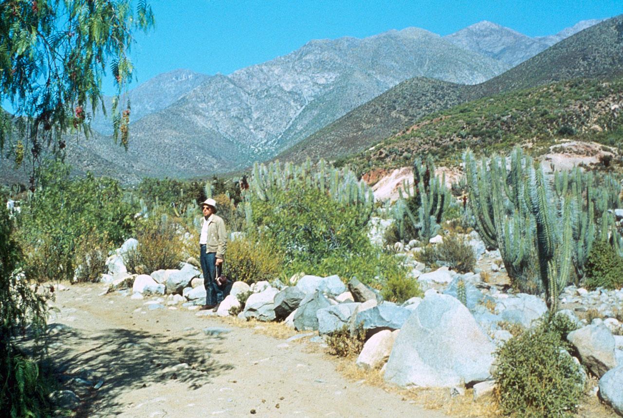 La Silla Site Search