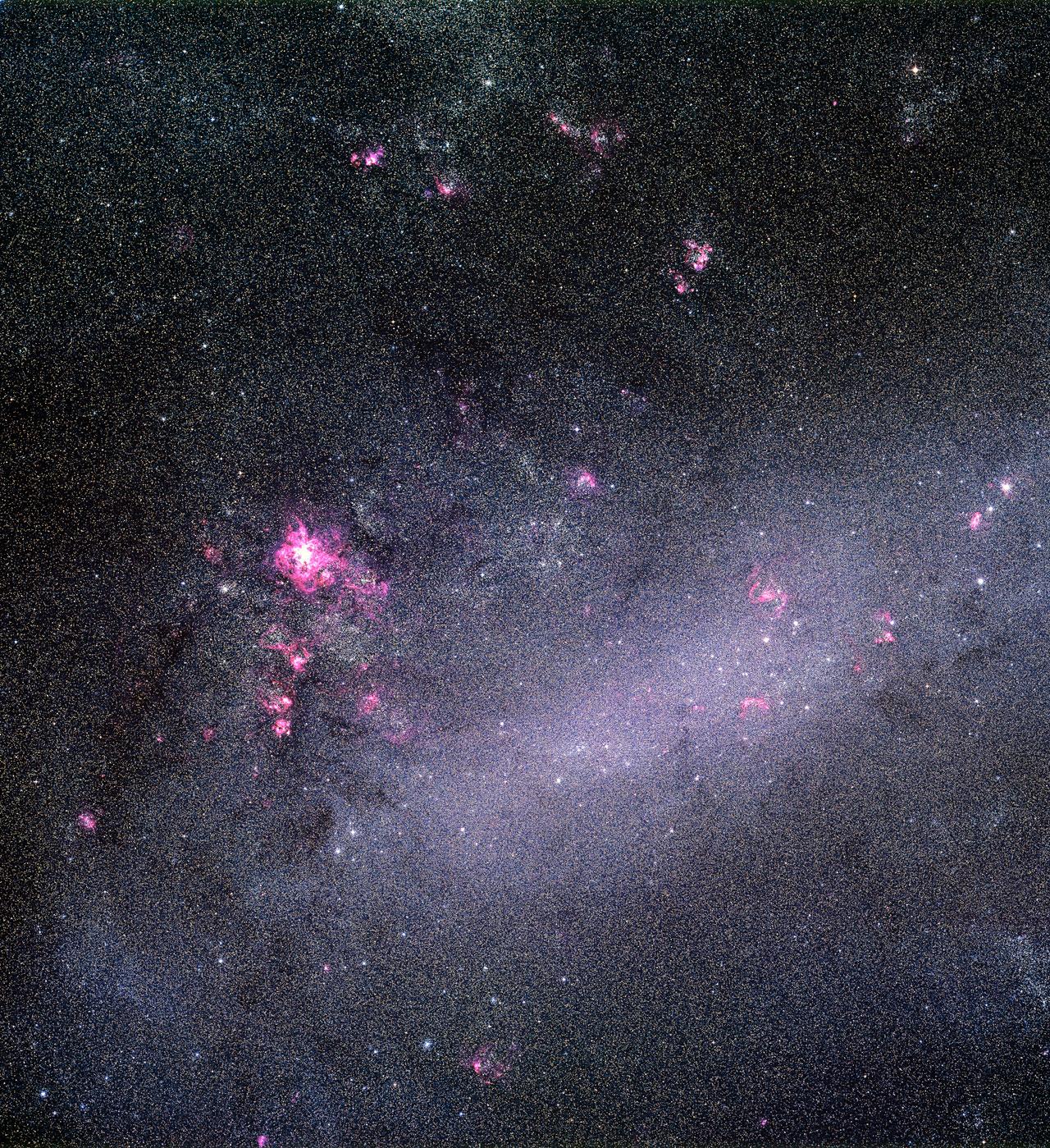 LMC Snapped by Schmidt Telescope