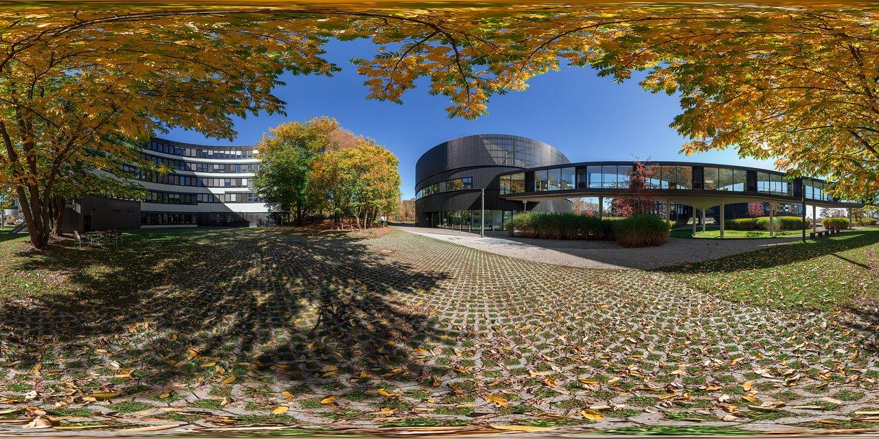 Autumn gold | ESO
