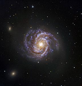 Messier 100 y Supernova SN 2006X
