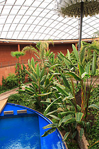 Paranal garden and swimming pool