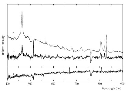 Spectra of the RXS J1131-1231 Lensing System