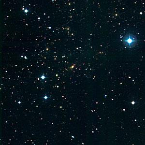 Cluster of Galaxies RXCJ1131.9-1955