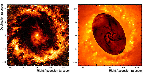 Filamentary Structures in NGC 1097