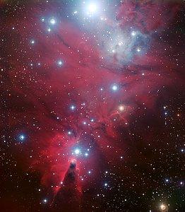 NGC 2264 e o enxame da Árvore de Natal
