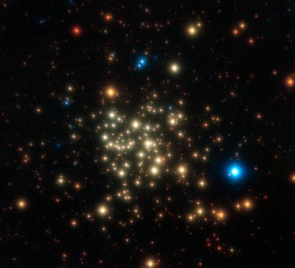 The Arches Cluster