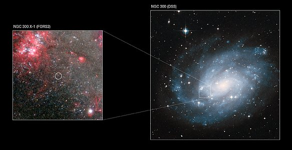 NGC 300 X-1 in the spiral galaxy NGC 300