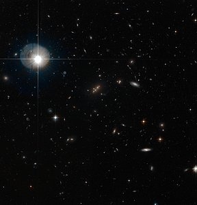 The galaxy cluster MACS J2135-010217 lensing SMM J2135-0102