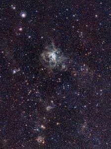 La nébuleuse de la Tarentule par le VISTA Magellanic Cloud Survey