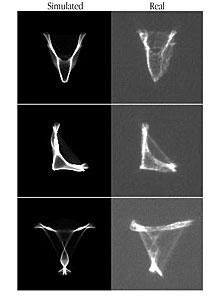 VLT Active Optics Distorted Images