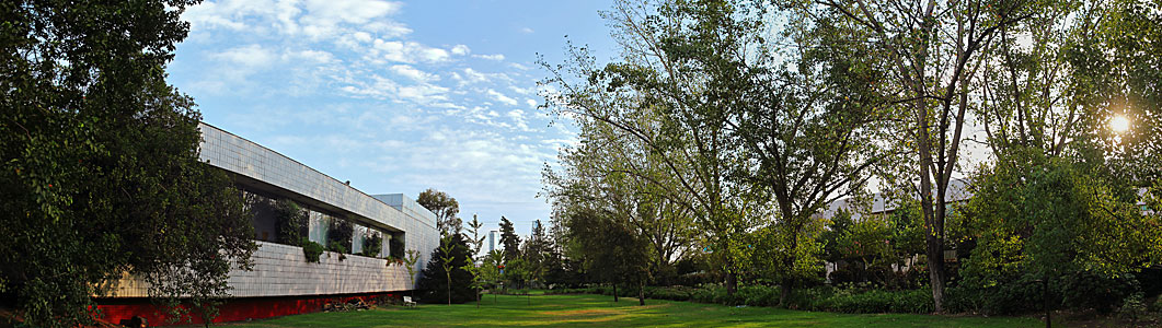 ESO Vitacura garden