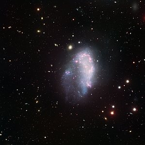 A Dwarf in the Fornax Cluster