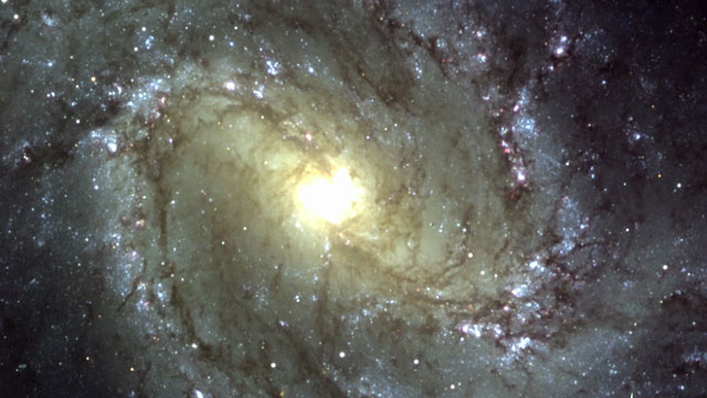 The Pinwheel Galaxy M83