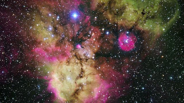 The stellar cluster NGC 2467