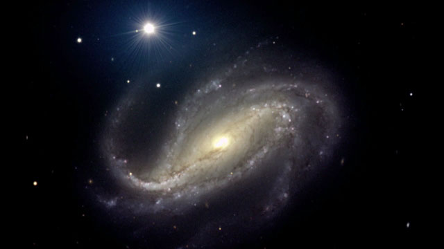 The barred spiral  galaxy NGC 613