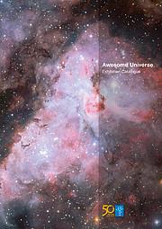 """Titelseite des Katalogs zur Ausstellung """"Awesome Universe"""" (Englisch)"""