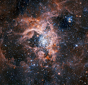The Tarantula Nebula region imaged with HAWK-I with the Adaptive Optics Facility