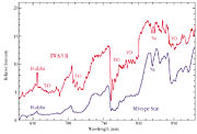 Optical Spectrum of Brown Dwarf TWA-5B
