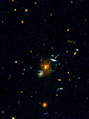 Distant Galaxy MS 1512-cB58