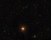 Digitized Sky Survey Image of the star T Leporis